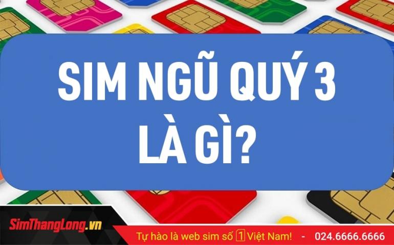 Kho SIM Ngũ Quý 3 Sim Thăng Long giá tốt nhất thị trường!